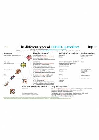 IAP Infographic on COVID-19 vaccines
