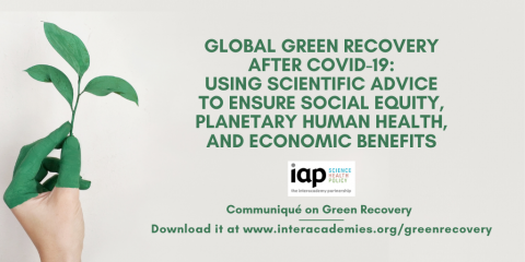 green recovery Twitter card