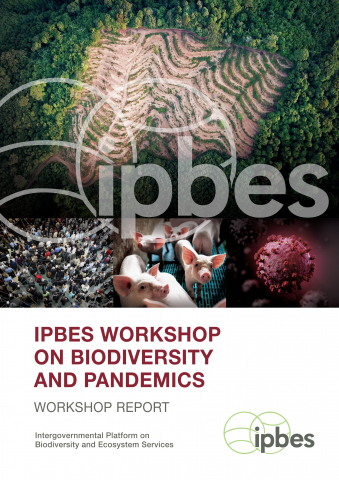 IPBES Workshop Report on Biodiversity and Pandemics